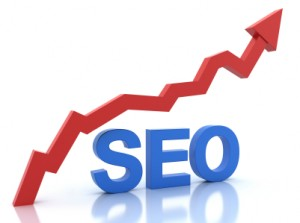 Raleigh Search Engine Optimization